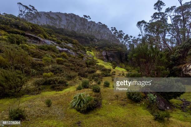 Mt Gould at Overland track, Tasmania