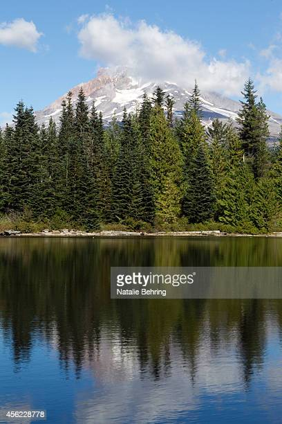 Mt Hood is seen reflected in Mirror Lake September 27 2014 Following considerable public outcry the US Forest Service announced Thursday it will...
