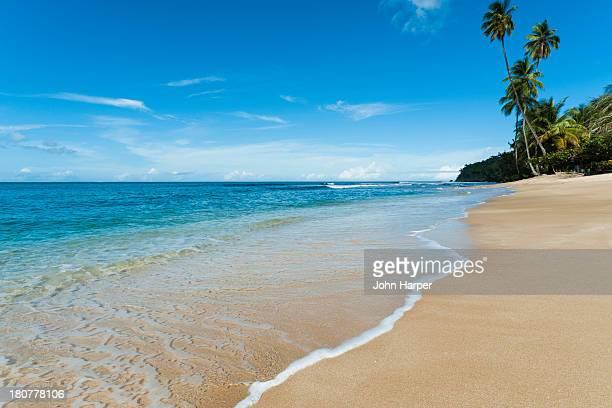 Mt. Irvine Bay, Tobago