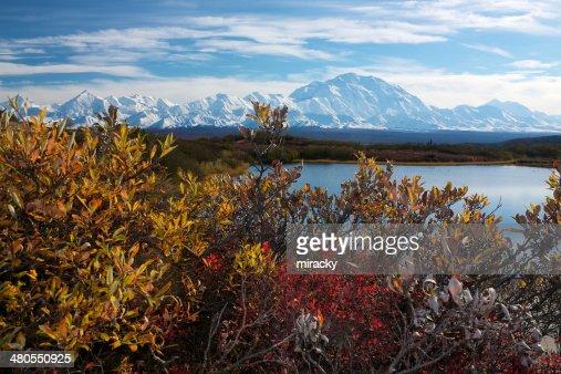 Monte McKinley del estanque de reflexión : Foto de stock