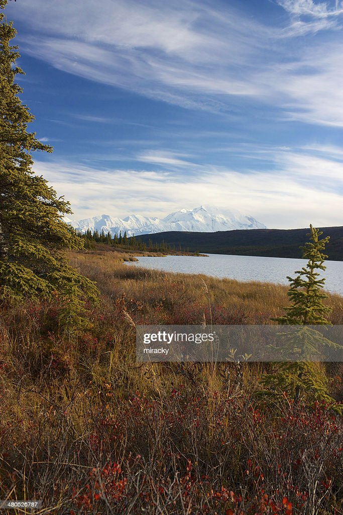 Mt. McKinley from Wonder Lake : Stock Photo