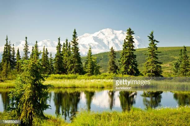 Mt. McKinley Reflected