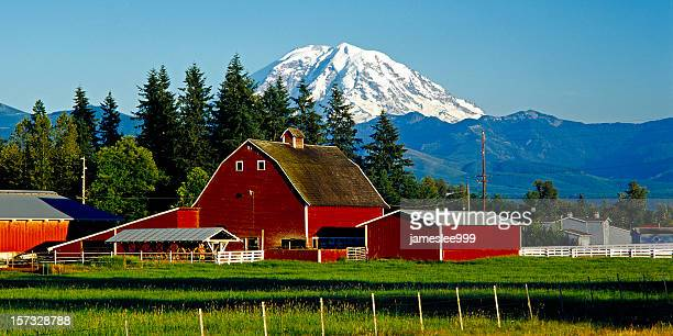 Mt Rainier and red barn