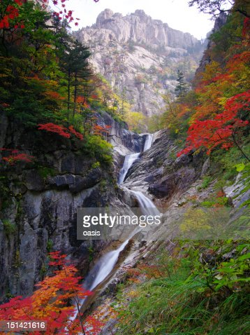 Mt. seorak : Stock Photo