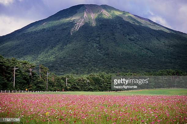 Mt.Daisen , Tottori prefecture , Japan