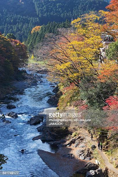 Mt.Mitake in autumn