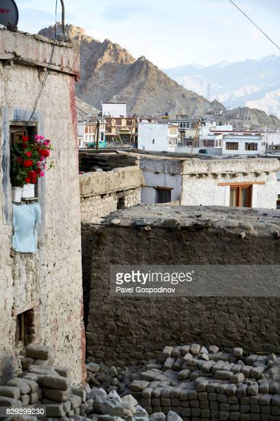 Mud Brick Houses  In The Old Part Of The Town Of Let, Ladakh