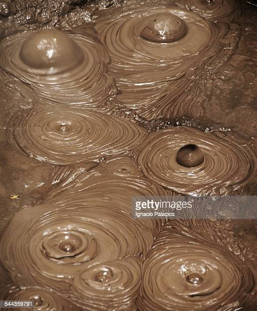 Mud pool detail in Rotorua geotermical area