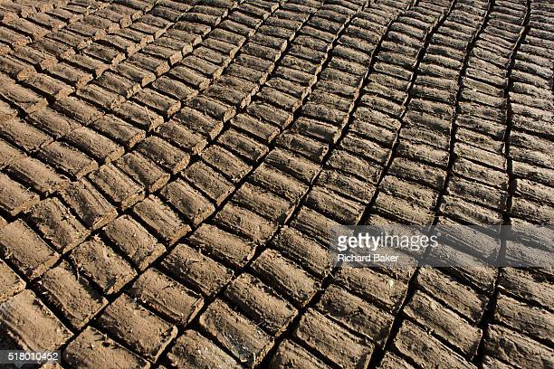 Mudbricks used for Muslim graves dry in evening sunlight of a local cemetery in the village of Qum on the West Bank of Luxor Nile Valley Egypt A...