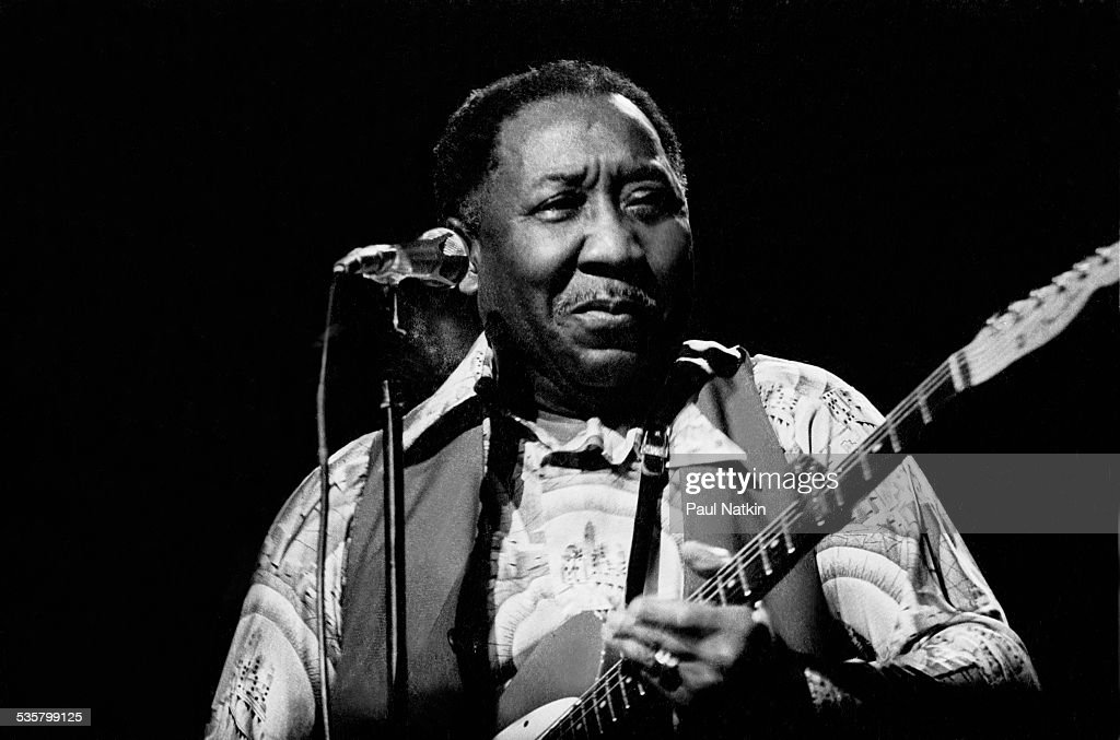 Muddy Waters Musician Pictures Getty Images