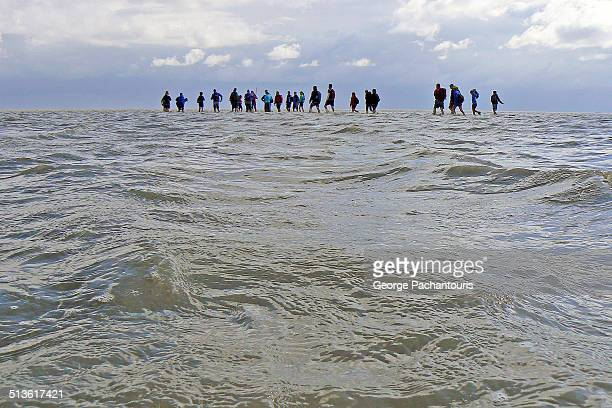 Mudflat hikers in the Wadden sea