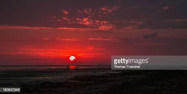 Mudflat of the Island Fano at sunset