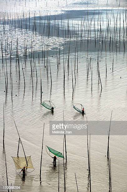 Mudflats with bamboo poles