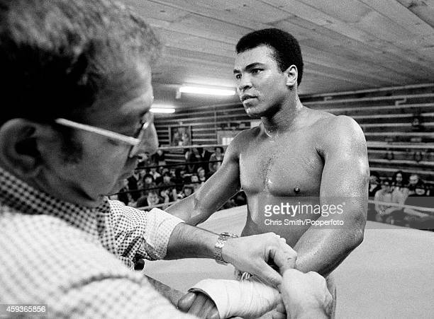 Muhammad Ali being bandaged by his trainer Angelo Dundee whilst in training for his second fight against Joe Frazier at Deer Lake Pennsylvania on...