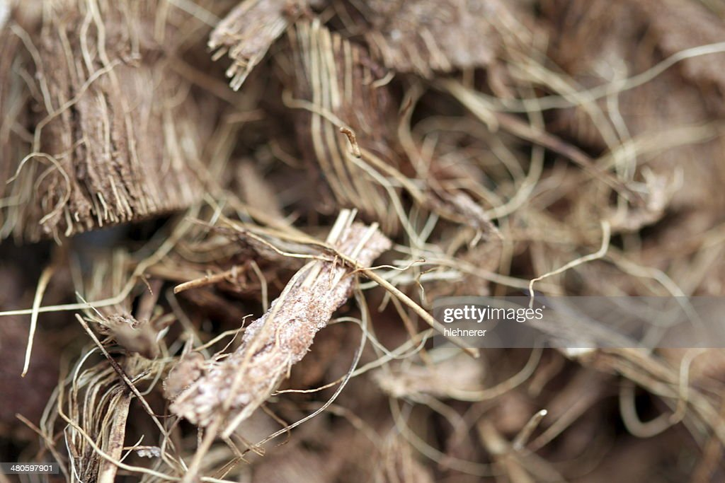 mulch : Stock Photo