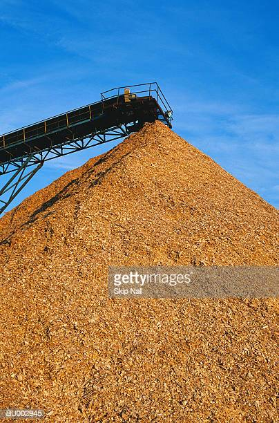 Mulched Wood Pile