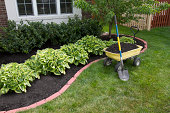 Mulching bed around the house and bushes, wheelbarrel along with a showel.