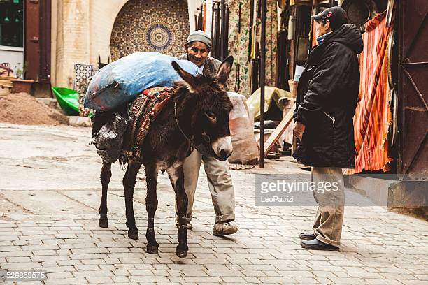 Mule transportation in Fez Medina streets