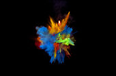 Bizarre forms of powder paint and flour combined  exploding in front of a black background to give off fantastic colors and forms.
