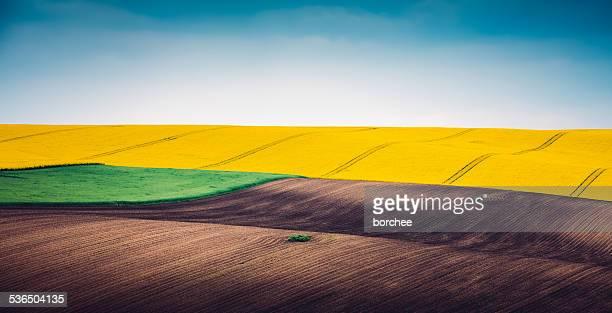 Bunt Panoramablick auf Frühling Feld
