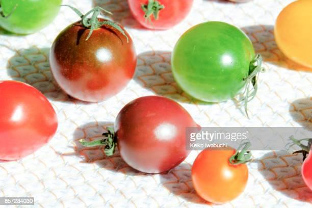 multi colored petit tomatoes