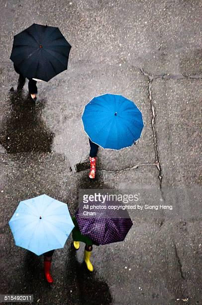 Multi Coloured Umbrella in Rainy Vancouver