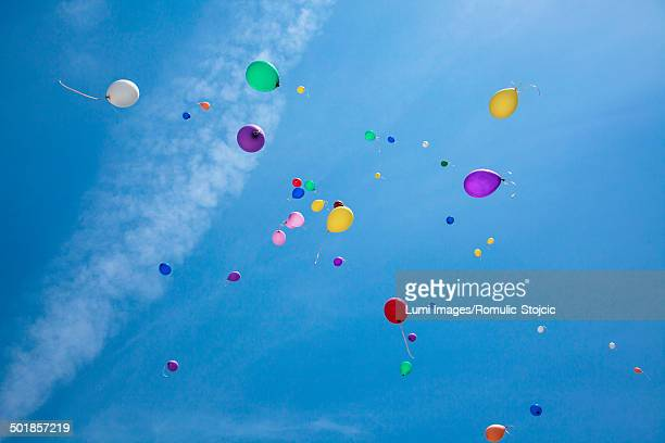 Multi-colored balloons flying in the blue sky