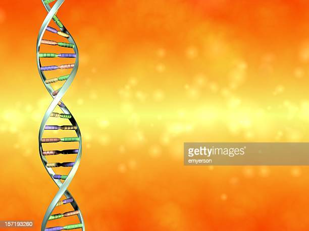 Multicolored DNA strand on an orange background