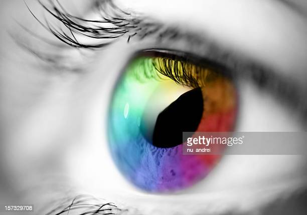 multicolored eye macro
