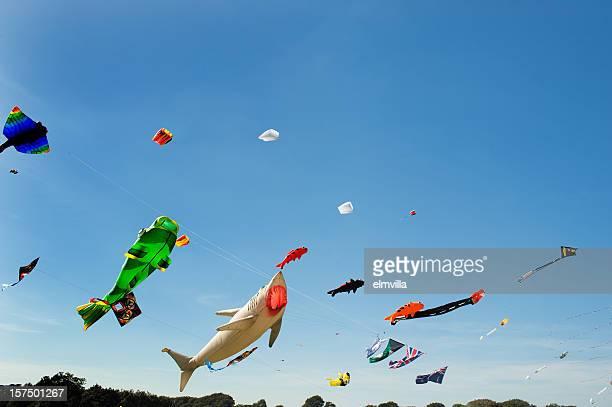Grandi aquiloni multicolore contro un cielo azzurro