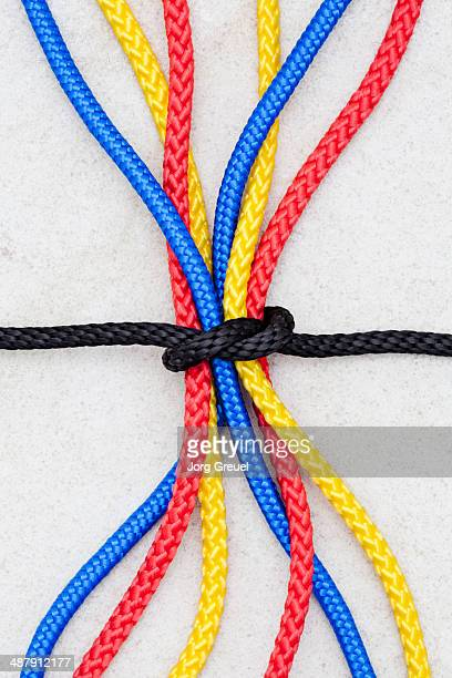 Multicolored ropes
