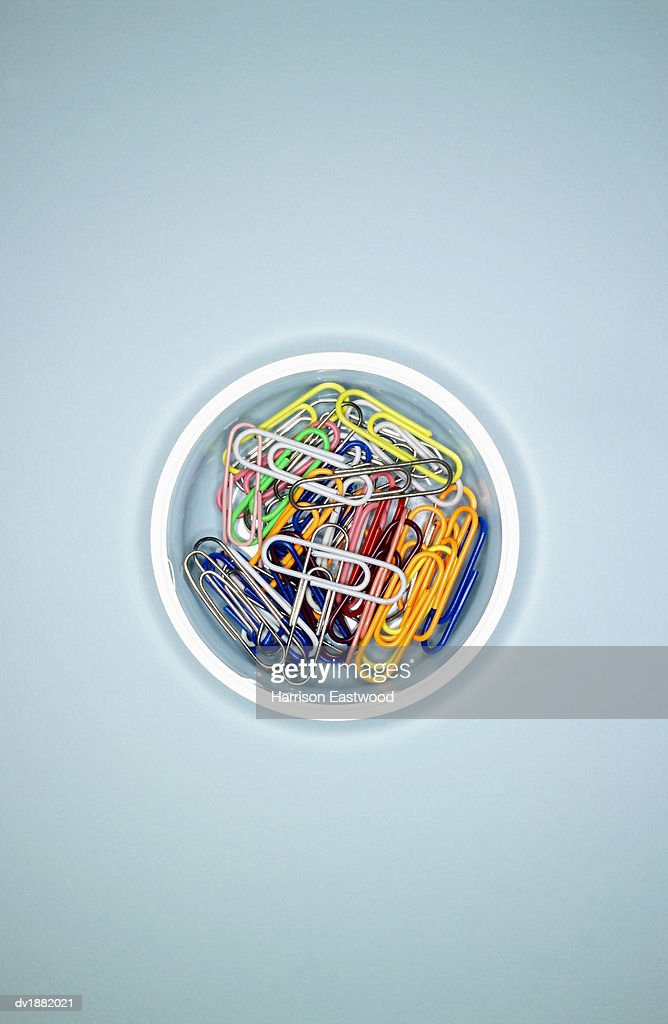 Multi-coloured Paperclips : Stock Photo