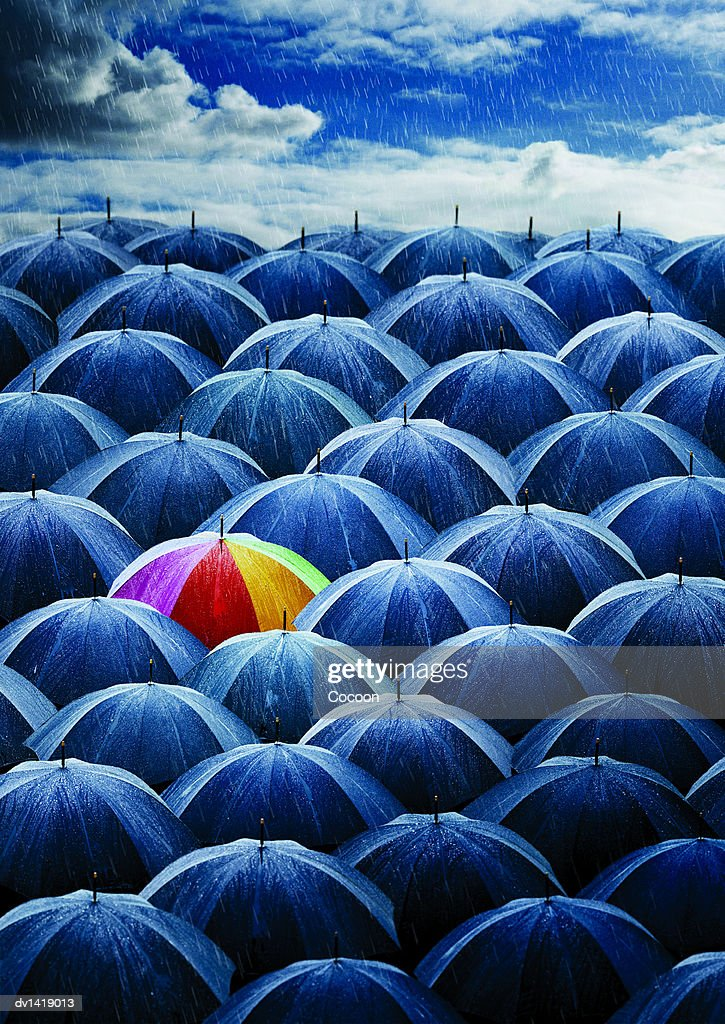 Multi-coloured Umbrella Amongst a Large Group of Umbrellas Open in the Rain : Stock Photo