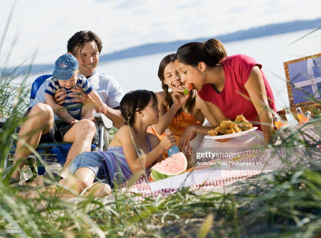 Multi-ethnic family having picnic : Stock Photo