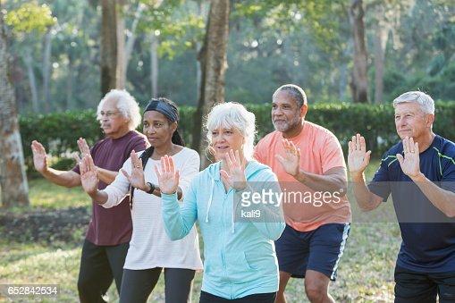 Multi-ethnic group of seniors taking tai chi class : Foto stock