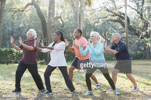 Multi-etnische groep van senioren nemen van tai chi klasse : Stockfoto