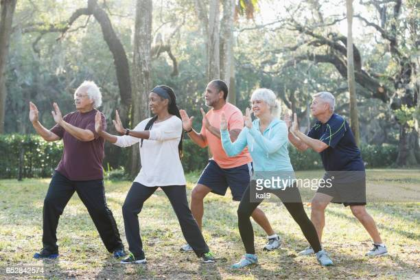 Multi-ethnic group of seniors taking tai chi class