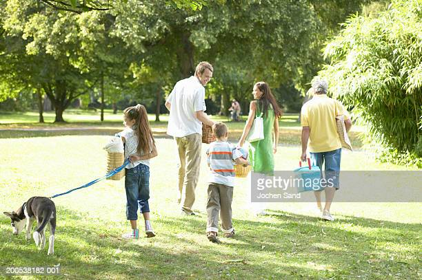 Multi-generational family carrying picnic things in park, rear view