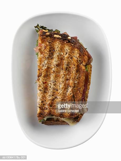 Multigrain panini on white plate