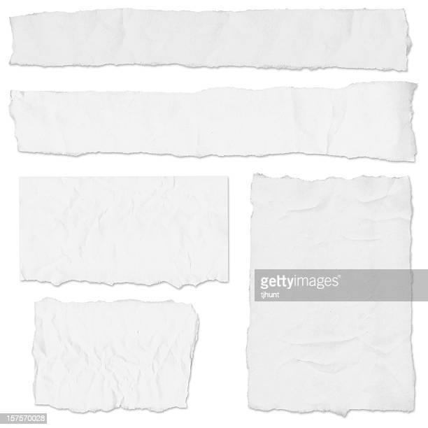 Multiple blank newspaper tears on white