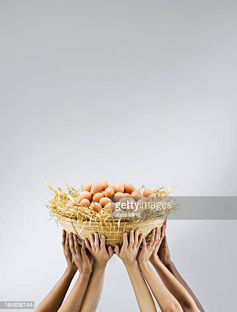 Multiple hands holding a big pile of eggs
