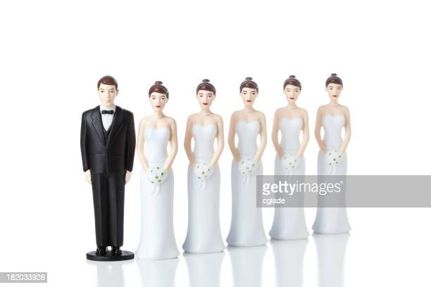 Multiple Marriages Wives
