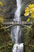 Vertical shot of Multnomah Falls Oregon