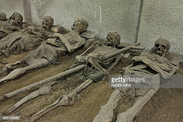 Mummies are pictured in the tomb of the Capuchin monastery in Brno Czech republic on June 5 2014 In the Capuchin Crypt monks and supporters of the...