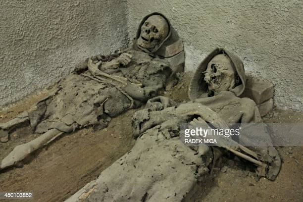 Mummies wearing cowls are seen in the tomb of the Capuchin monastery in Brno Czech Republic on June 5 2014 In the Capuchin Crypt monks and supporters...