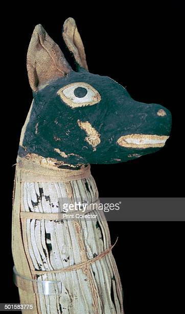 Mummy of a dog possibly representing Anubis from an Egyptian tomb from the Louvre's collection