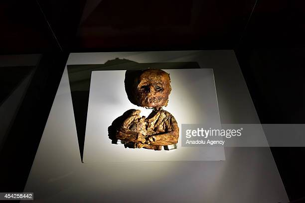 A mummy of child is exhibited in Aksaray Museum Aksaray Turkey on 20 August 2014 10 child and adult mummy and 2 cat mummy are exhibited in Aksaray...