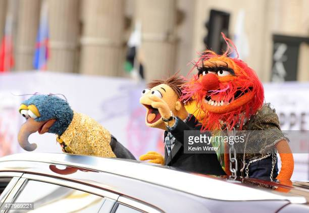 Muppet characters The Great Gonzo Walter and Animal arrive for the premiere of Disney's 'Muppets Most Wanted' at the El Capitan Theatre on March 11...