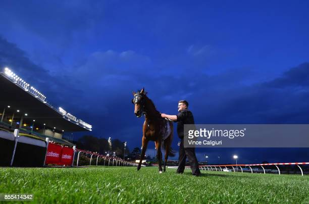 Muraaqeb poses after winning Race 1 during Melbourne Racing at Moonee Valley Racecourse on September 29 2017 in Melbourne Australia