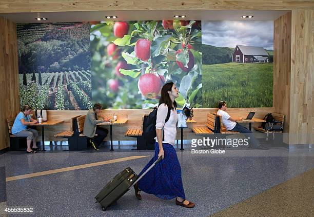 A mural by the Berkshire Farms Market a retail shop at Logan Airport that has done extremely well in its inaugural year The shop sells local goods...